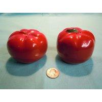 Combo Of Tomato Shape Salt & Pepper Shaker With Durable Onion Chopper