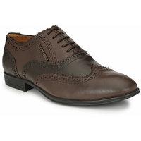 Alberto Torresi Protom Formal Brown Shoe