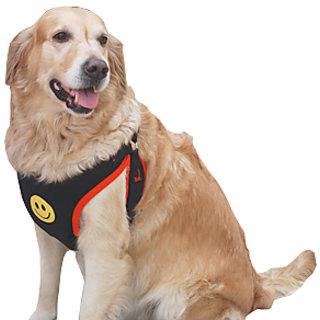 Dog Body Harness for Labrador GSD  Dalmation Size No26