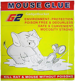 Right Traders Mouse Glue Pad Kill Rat Mouse Without Poisons