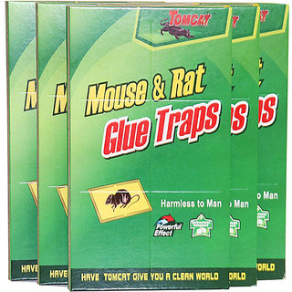 Right Traders Mouse Glue Pad/ Rat Catching Pad (Set of 3)
