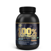 100 Whey Protein Ultra- Chocolate, 1 Lb