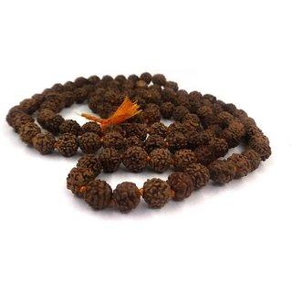 6mm Rudraksha Japa Mala (108+1) Beads