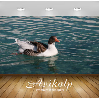 Avikalp Exclusive Premium duck HD 3D Wallpapers for Living room, Hall, Kids Room, Kitchen, TV Background, Office, Shop etc AWI94