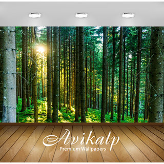 Avikalp Exclusive Premium forest HD 3D Wallpapers for Living room, Hall, Kids Room, Kitchen, TV Background, Office, Shop etc AWI120