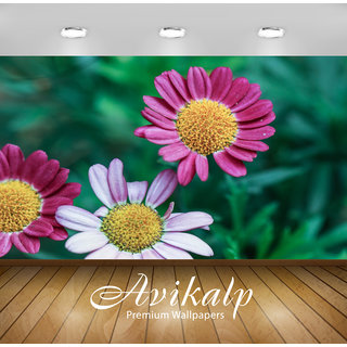Avikalp Exclusive Premium flowers HD 3D Wallpapers for Living room, Hall, Kids Room, Kitchen, TV Background, Office, Shop etc AWI118