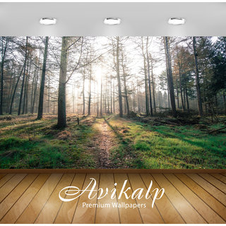 Avikalp Exclusive Premium forest HD 3D Wallpapers for Living room, Hall, Kids Room, Kitchen, TV Background, Office, Shop etc AWI121