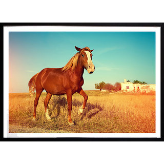 Horse in ground small (18X12 inch) poster