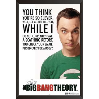 EJA Art Sheldon Quote The Big Band Theory Artwork Poster (12x18 Inches)