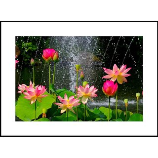 MYIMAGE Beautiful Flowers  Digital Printing  Framed Poster (35 cm x 49 cm)