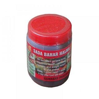 Health Tone Halwa Weight Gain Halwa 70g (Pack Of 1)