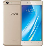 Vivo Y53 (2 GB,16 GB,Gold)