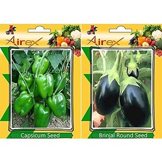 Airex Green Capsicum And Brinjal Round Vegetables Seeds (Pack Of 25 Seeds*2 Per Packet)