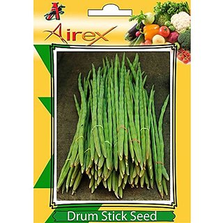 Airex Drum Stick Vegetables Seeds (1 Packet Of Drum Stick) Pack Of 10 Seeds*1 Per Packet