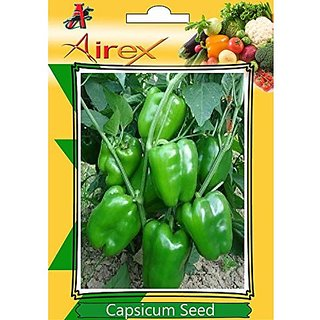Airex Green Capsicum Vegetables Seeds (Pack Of 15 Seeds Per Packet)