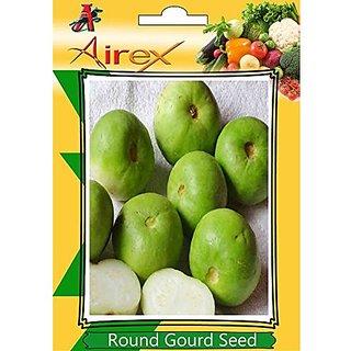 Airex Round Gourd (Tinda) Vegetables Seeds (1 Packet Of Round Gourd) Pack Of Avg 30-50 Seeds*1 Per Packet