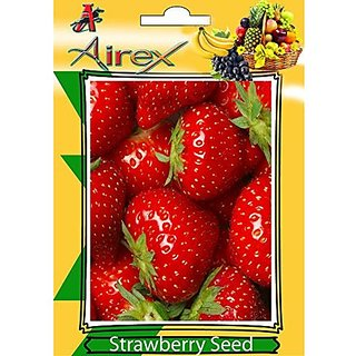 Airex Strawberry Fruit Seeds (1 Packet Of Strawberry) Pack Of 50 Seeds*1 Per Packet