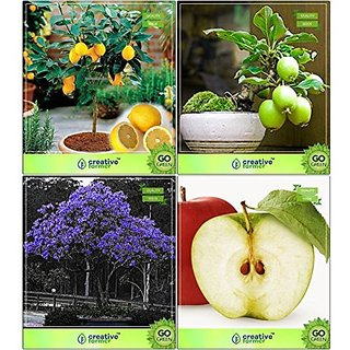 Bonsai Suitable Seeds : Bonsai Suitable Plant Seeds For Air Purification Combo Lemon, Guava , Jacaranda, Apple Garden Seeds Pack By Creativefarmer