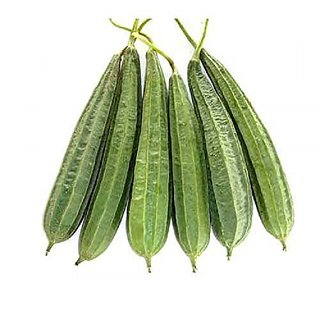 Ridge Gourd Seeds - Turai Tura Luffa Jhinga Seeds ForPlanting-20 Seeds by Creative Farmer