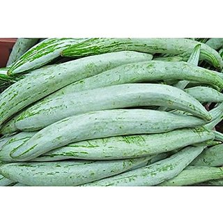 Creative Farmer Snake Gourd Seeds - High Yield Vegetable Seeds - Vegetable Seeds For Winter Kitchen : Kitchen Garden Pack