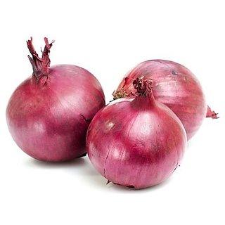 Vegetable Seeds Onion Seeds Hybrid F1 -200 Seeds by Creative Farmer