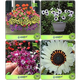 Flower Seeds : Garden Plants Seeds Combo Nemesia, Petunia- Blue , Phlox Twinkle, Venidium-White Garden Flower Seeds Pack By CreativeFarmer