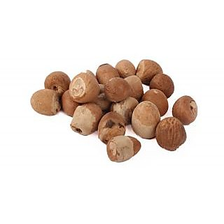 Yuvi Shoppe Supari Betel Nut / Supari For Poojap -21 Pcs