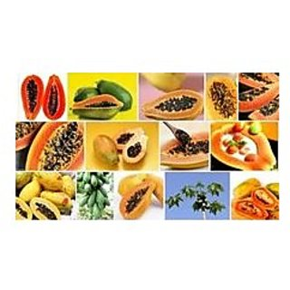 Fruit Seed - Papaya - Dwarf Variety Soft Mixed Fruit Plant Seeds For House Fruit Seeds Garden Pack By Creative Farmer