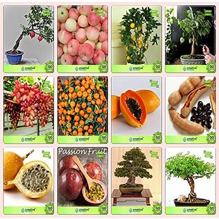 Bonsai Suitable Seeds : Seed For Garden Combo Pomagranate , Apple, Lemon, Ficus Religiosagrape,Orange,Papaya,Tamarind,Passion Fruit - Yellow Garden Seeds Pack By Creativefarmer