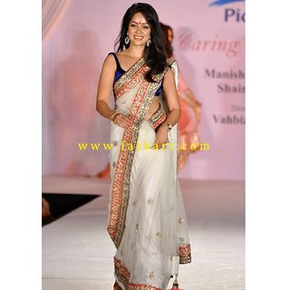 Vidya Malvade White Net Bollywood Saree