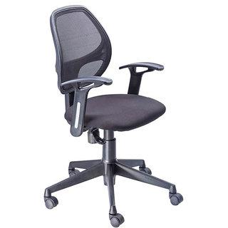 Mavi Beautiful Low Back Chair-DOC-572