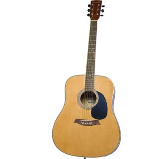 Guitar SHR103 Brown