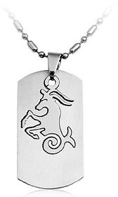 GirlZ!Stainless steel zodiac sign pendant necklace with chain - Capricorn