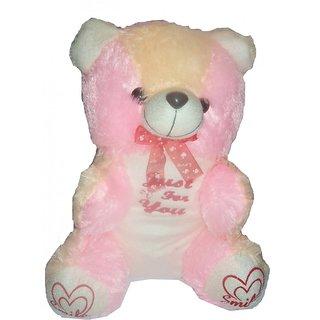 Teddy Bear, 12inch with