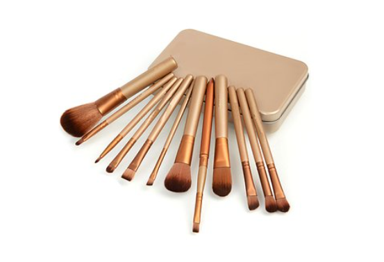 Trendster Makeup Brush Set Of 12 Pieces With Storage Box