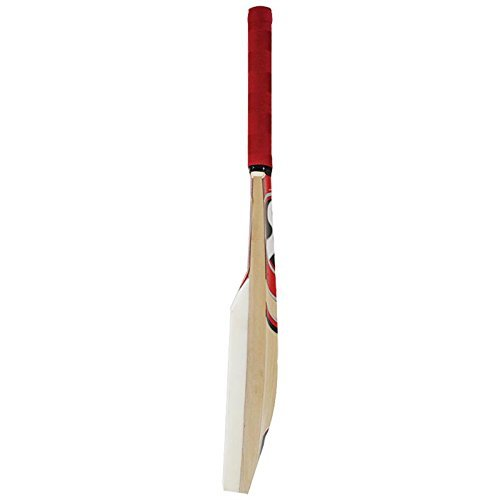 SG Catch bat Cricket Bat Genuine Kashmir Willow  Leather Ball