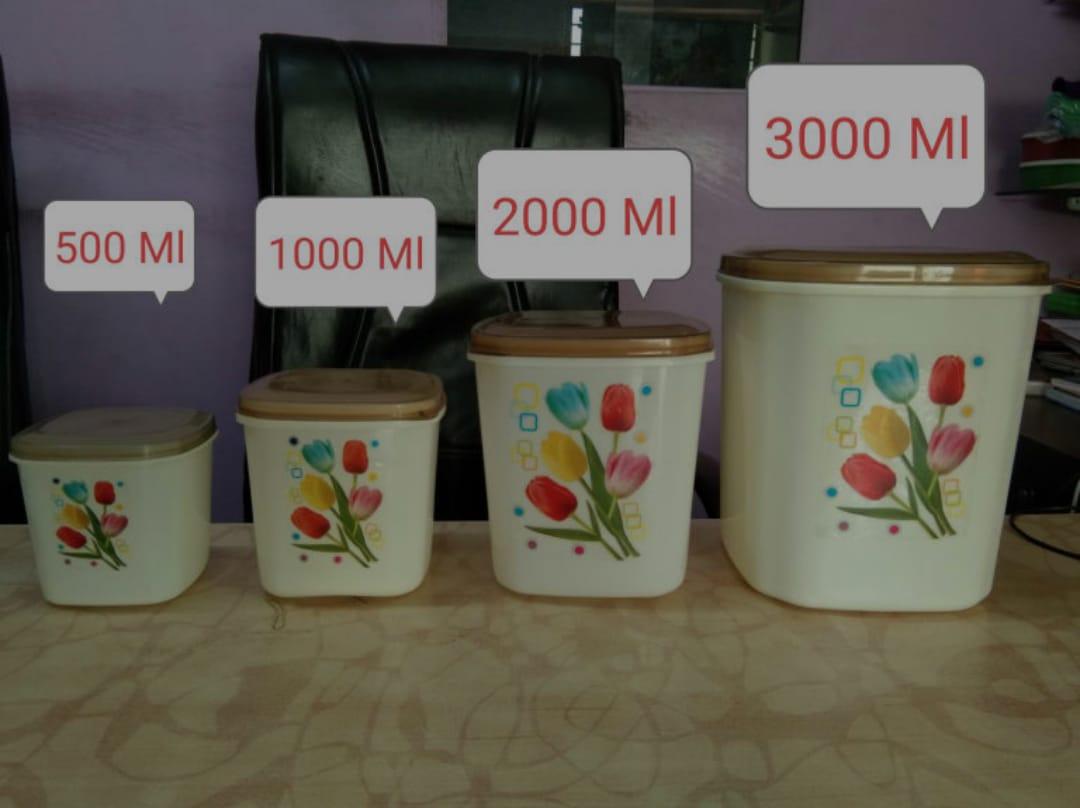 Lazywindow Pack of 4 Plastic 500+1000+2000+3000 ml Storage Box