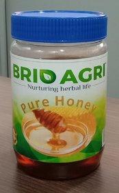 Brio Honey