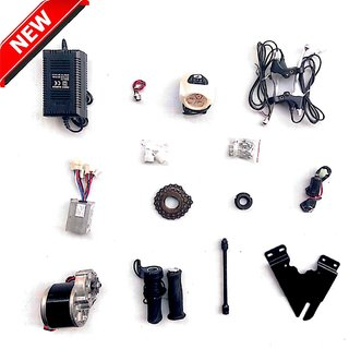 E-Vehicles 24v 250w Bicycle Conversion kit (nf)