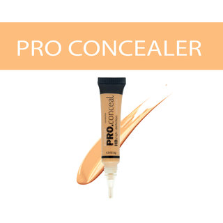 Insight Pro Concealer - Golden Sand-04(8 g)