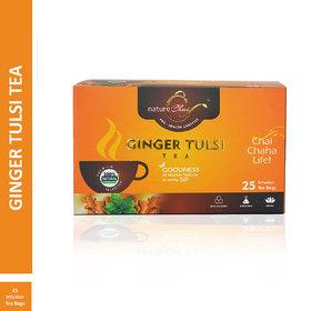 Nature Chai Ginger Tulsi Tea - 25 Tea Bags (Pack of 1)