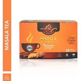 Nature Chai Masala Green Tea - 25 Tea Bags (Pack of 1)