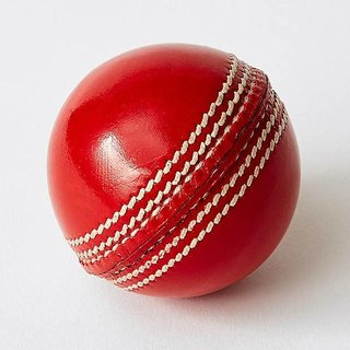 Cos theta  sports red leather ball pack-1