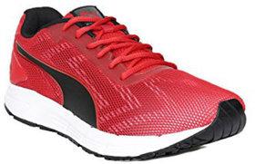 Puma Engine Idp Sports Shoe 19043105