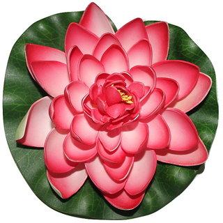 Divya Lotus Flower, Dry Flower , Floating Flower , Attractive Beautiful Lotus Flower