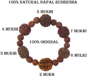 Rudraksha Rudrksh 2 3 4 5 6 7 Mukhi (Face) Beads Mala Wrist band bracelet  Women Men