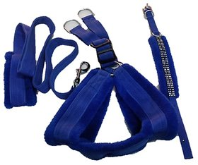PET CLUB51 HIGH QUALITY COMBO FAR HARNESS-BLUE-SMALL(chest -22-25) DOG