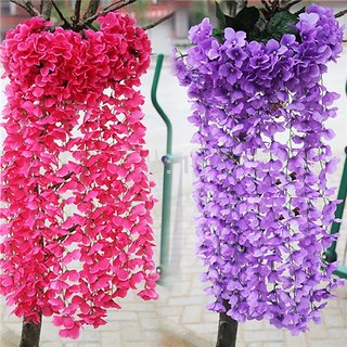 Beautiful Attractive Hydrangea Flower Plant Seeds By  E Trading