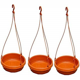 Bird Feeder with Holding Hook (Pack of 3)