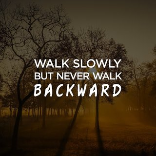 walk slowlyAll Time Posters| |Sticker Paper Poster, 12x18 Inch